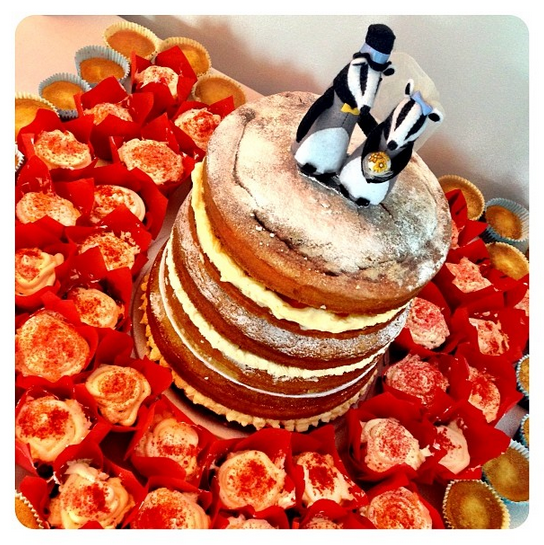 Badger wedding cake