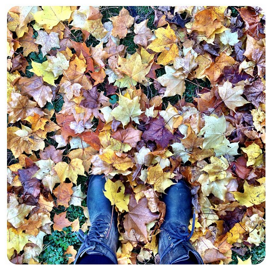 Hunter wellies standing in autumn leaves