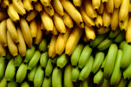 Food waste and a banana saving recipe